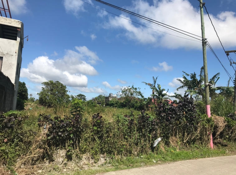 Vacant Lot For Sale, Brgy. Malabag, Silang, Cavite