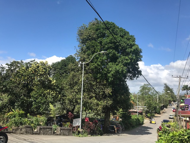 Residential Lot For Sale, Tagaytay City, Cavite 9