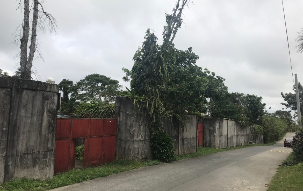 Agricultural Lot with Residential Building For Sale, Silang, Cavite 12