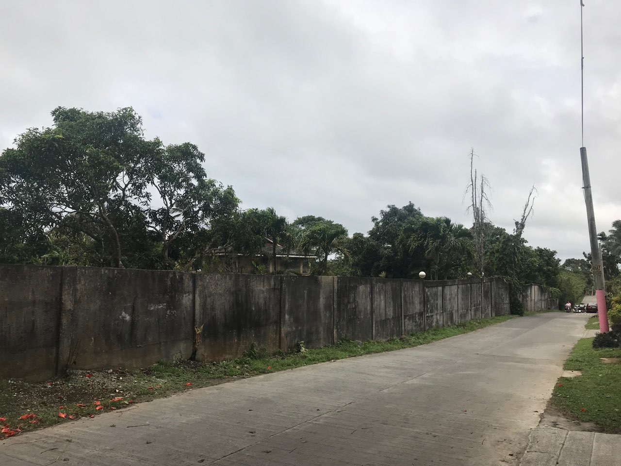 Agricultural Lot with Residential Building For Sale, Silang, Cavite 13