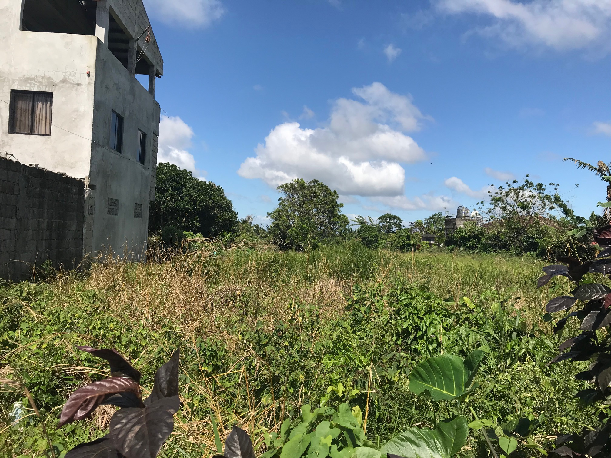 Vacant Lot For Sale, Brgy. Malabag, Silang, Cavite 1
