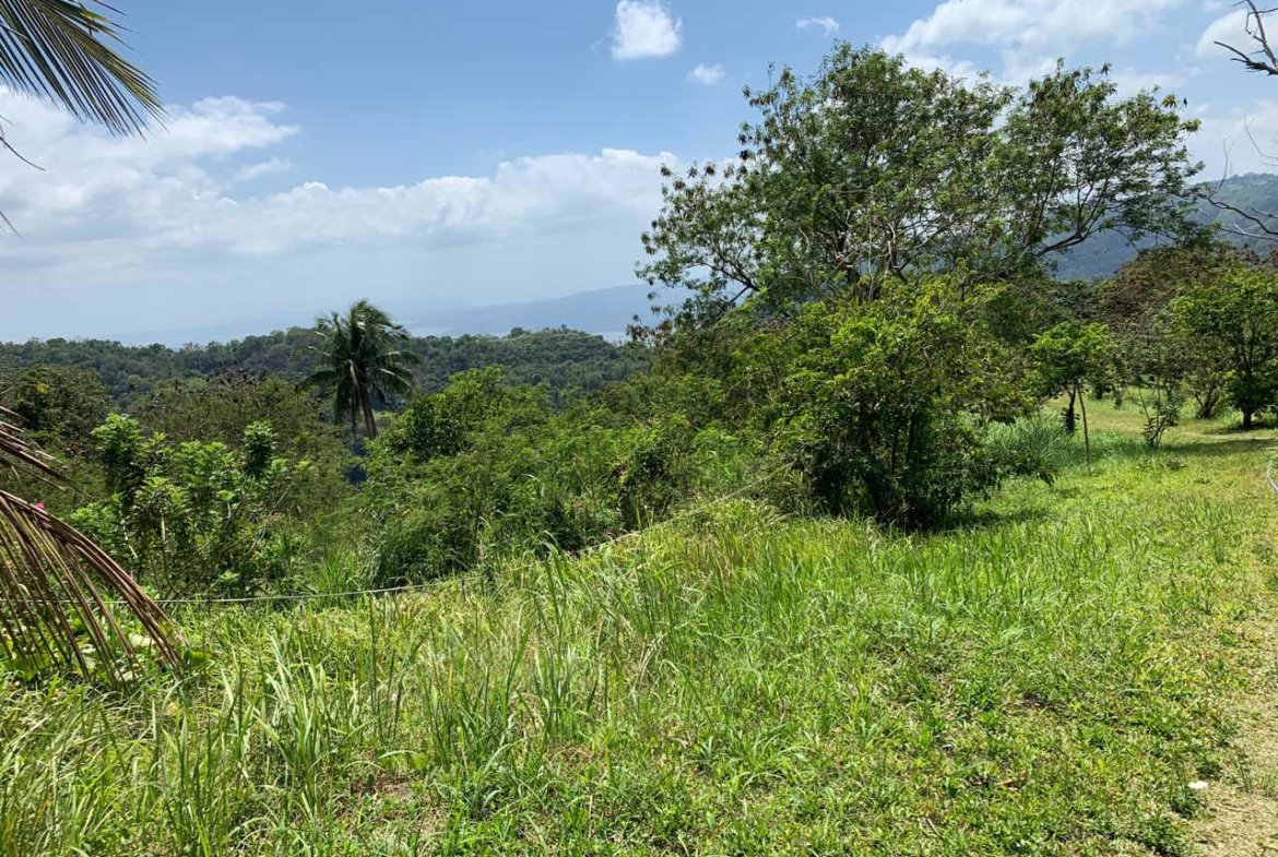 Vacant Lot For Sale, St. Francis drive, Tolentino, Tagaytay City