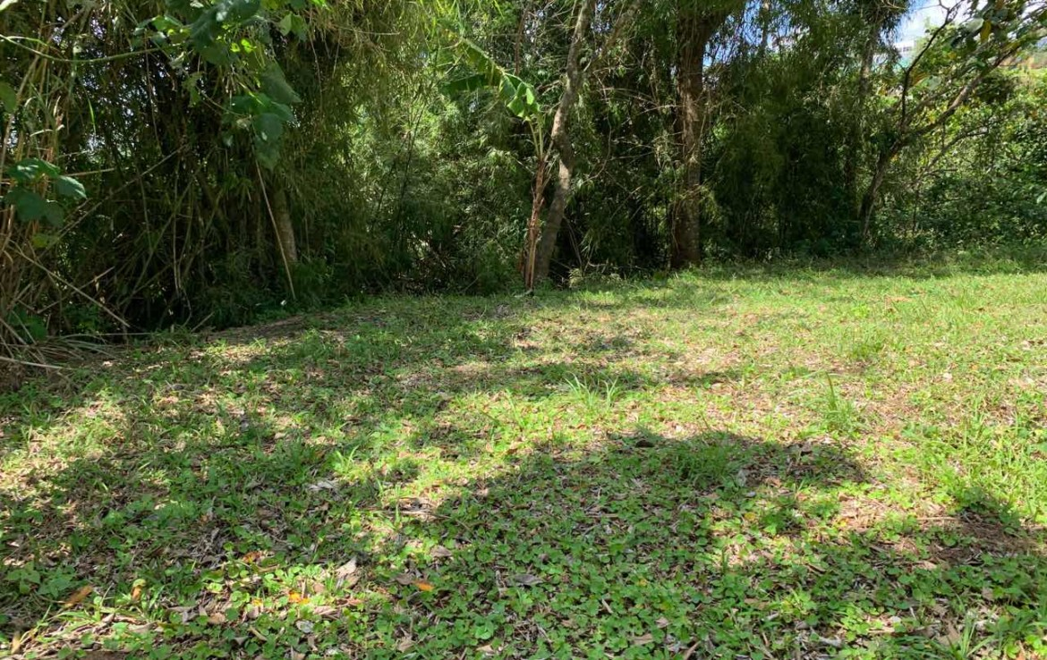 Vacant Lot For Sale, St. Francis drive, Tolentino 3