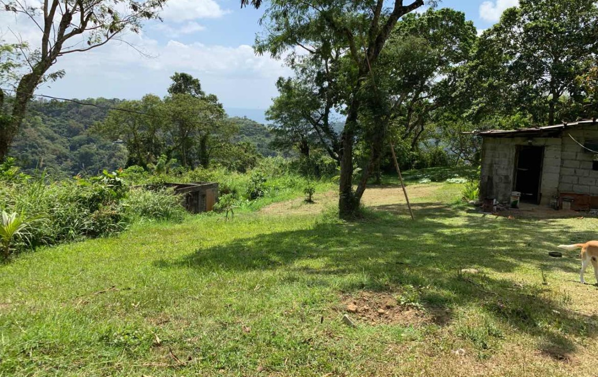 Vacant Lot For Sale, St. Francis drive, Tolentino 6