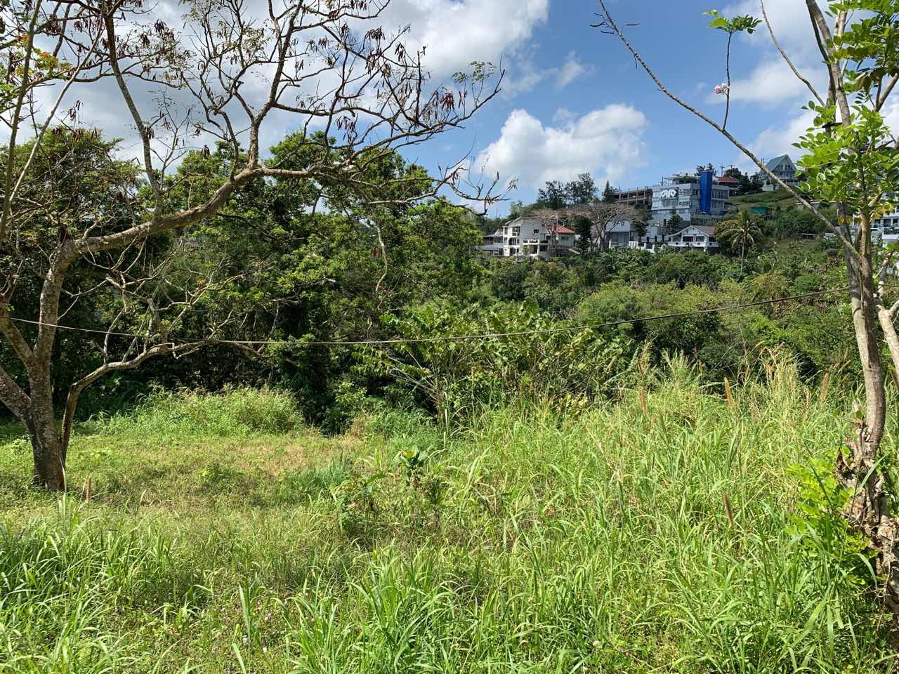 Vacant Lot For Sale, St. Francis drive, Tolentino 7