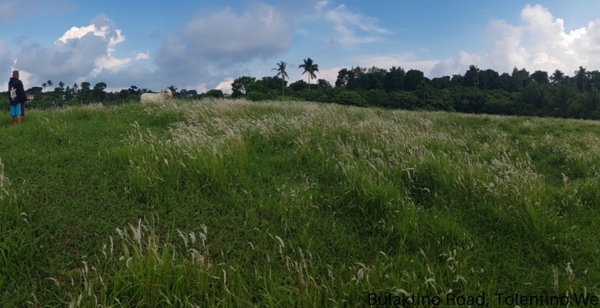 Vacant lot For Sale, Tolentino West, Tagaytay City