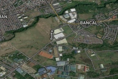 Agricultural Lot For Sale, Carmona, Cavite