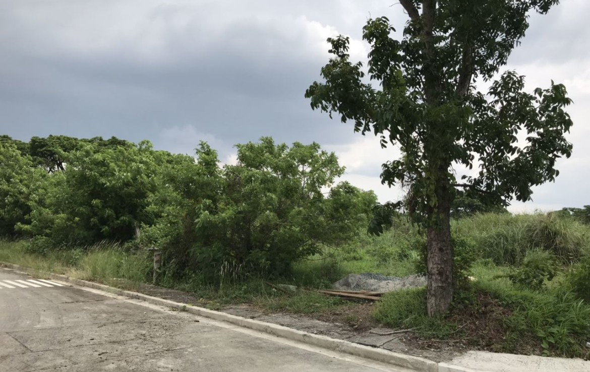 Industrial Lot For Lease, General Trias, Cavite 4