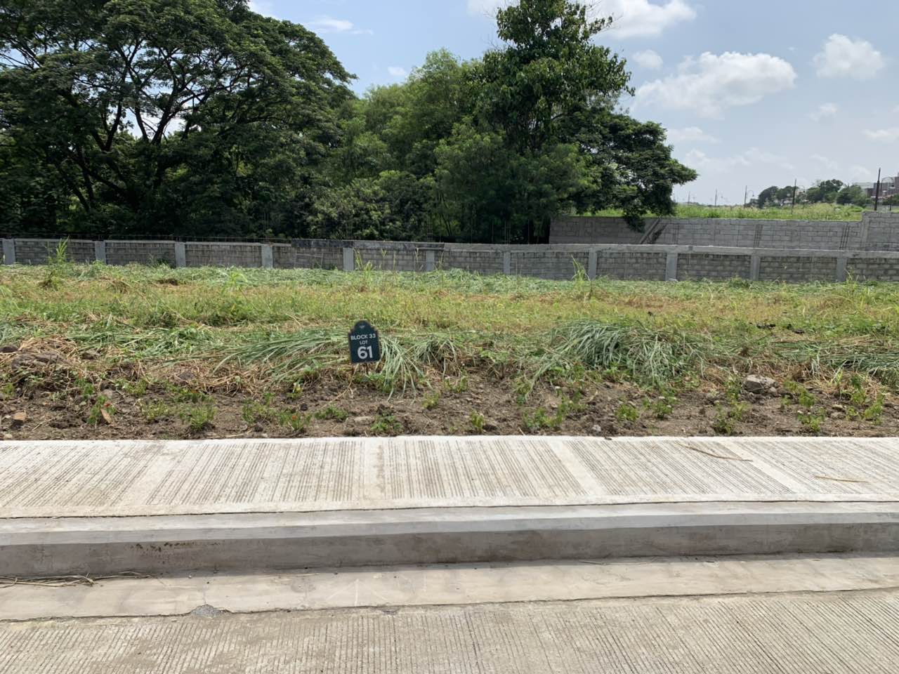 Lot For Sale at Alabang West, Las Pinas City