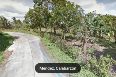Vacant Lot For Sale at Mendez, Cavite
