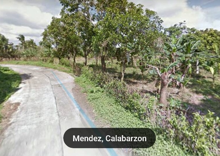 Vacant Lot For Sale at Mendez,Cavite