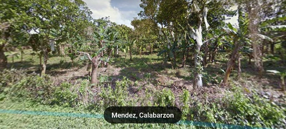 Vacant Lot For Sale at Mendez, Cavite 2