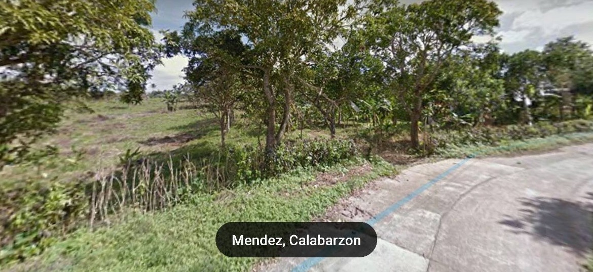 Vacant Lot For Sale at Mendez, Cavite 3