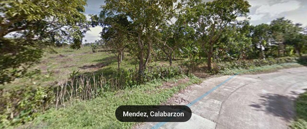 Vacant Lot For Sale at Mendez,Cavite 3