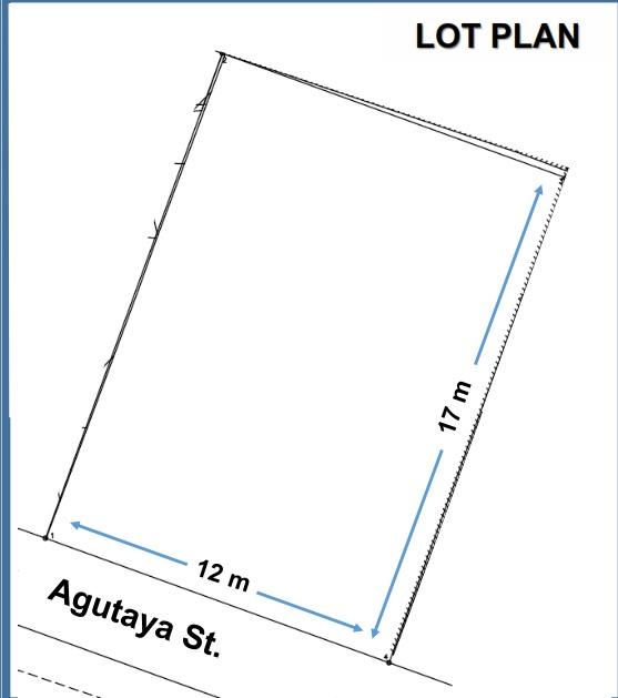 Agutaya Makati Lot Raw Land For Sale-LotPlan