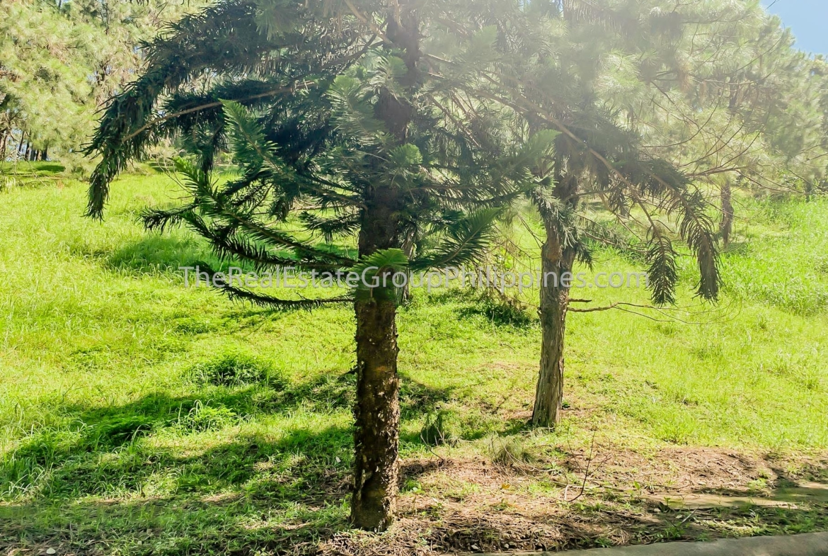 Residential Lot For Sale, Crosswinds Resort Suites, Tagaytay City (2 of 8)
