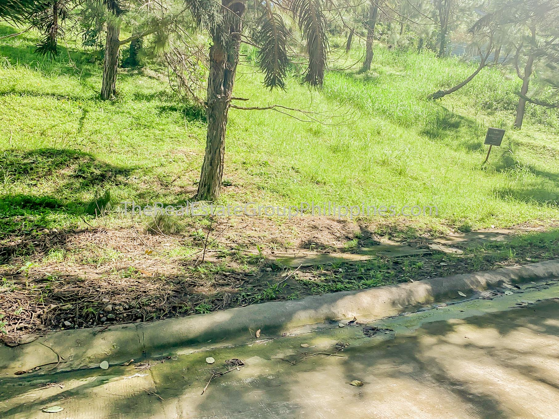 Residential Lot For Sale, Crosswinds Resort Suites, Tagaytay City (6 of 8)