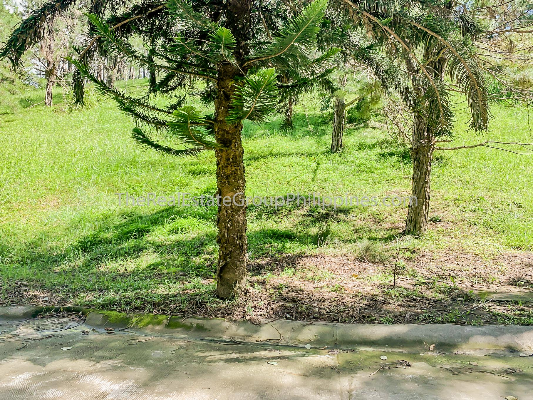 Residential Lot For Sale, Crosswinds Resort Suites, Tagaytay City (7 of 8)