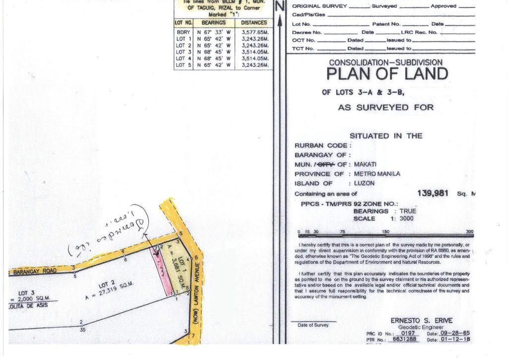 3.9 Hectare Vacant Lot Land For Sale Makati Taguig-3