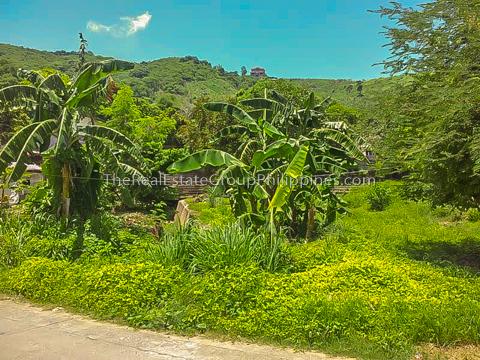 1300 Sqm Vacant Lot For Sale an Carlos heights subd bgy tayuman binangonan Rizal-6