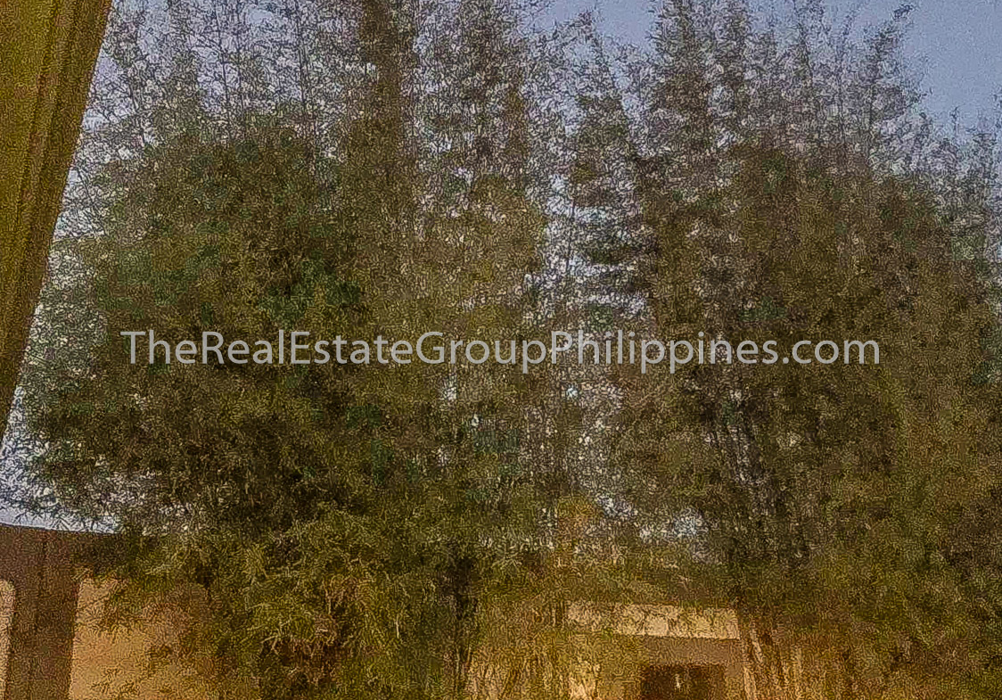 4371 Sqm House For Sale, Brgy Mahabang Parang, Binangonan Rizal-4