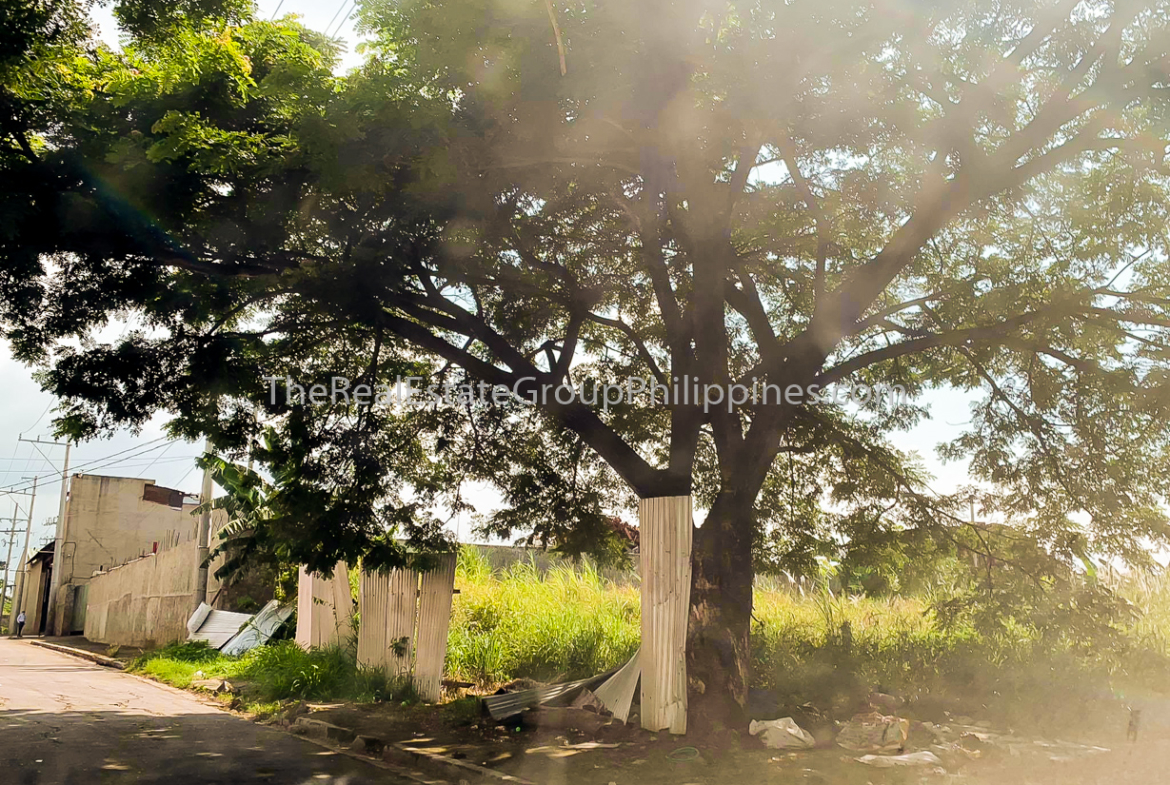 4K Sqm Industrial Lot For Lease, General Trias, Cavite-2